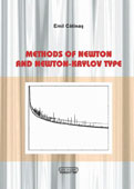 Methods of Newton and Newton-Krylov Type